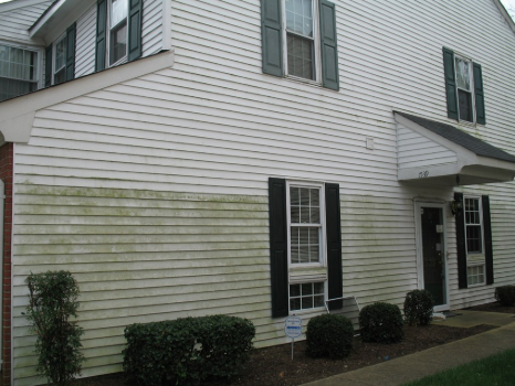 Freehold Power Washing