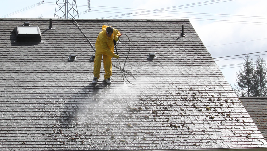 Belmar Roof Cleaning Company